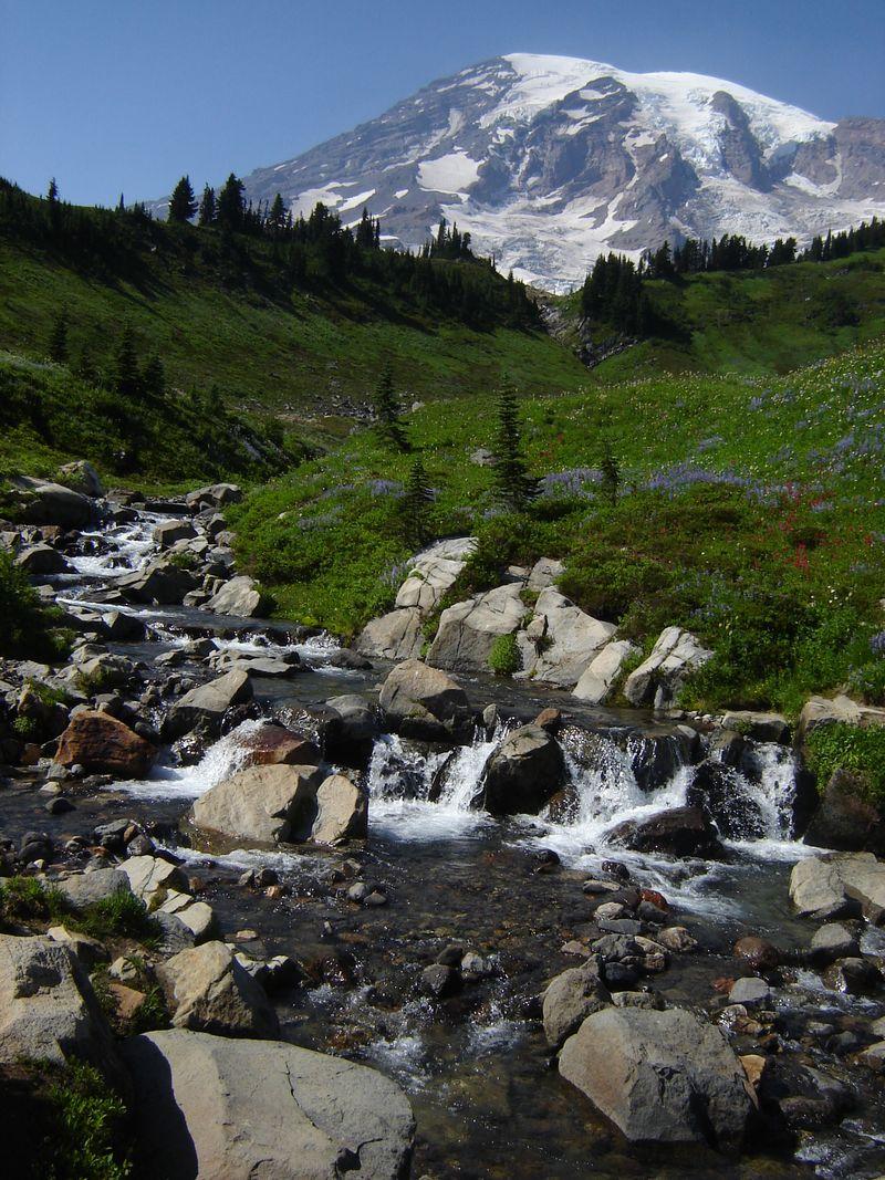 Mount Rainier July 2009 018